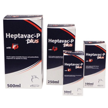 Heptavac P Plus 100ml, POM-VPS