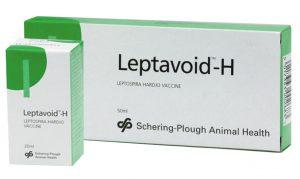 Leptavoid H 25 dose, POM-VPS