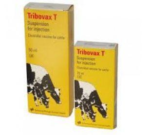 Tribovax T 100ml, POM-VPS