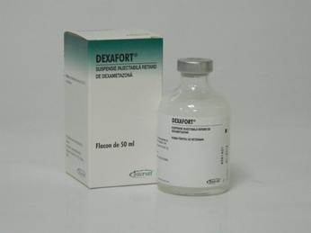 Dexafort 50ml, POM-V