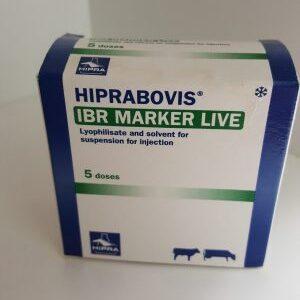 Hiprabovis Marker Live IBR 5dose, POM-V