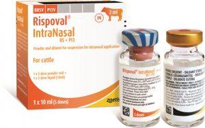 Rispoval Intranasal RS+PI3 5 dose (with applicator), POM-V