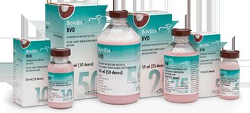 Bovilis BVD 10 dose, POM-V