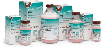 Bovilis BVD 50 dose, POM-V