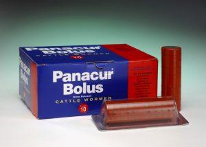 Panacur Bolus 10 pack, POM-VPS