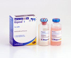 Rispoval 4 - 5 dose, POM-V