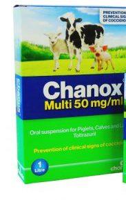 Chanox 50mg ml